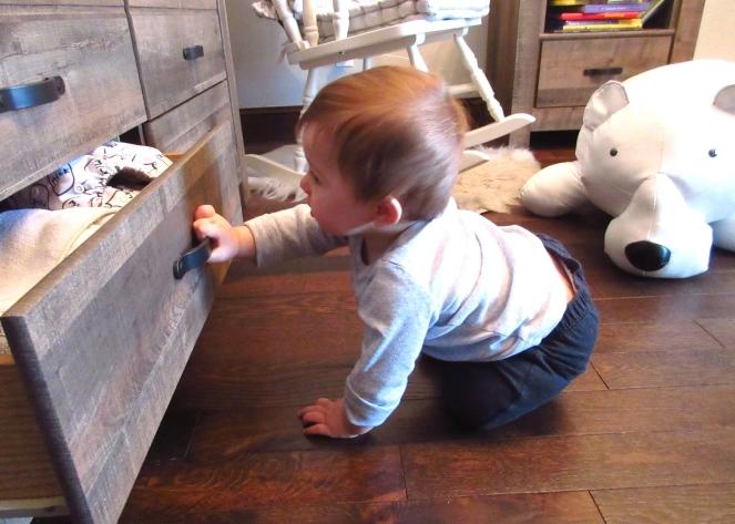 nursery crawl